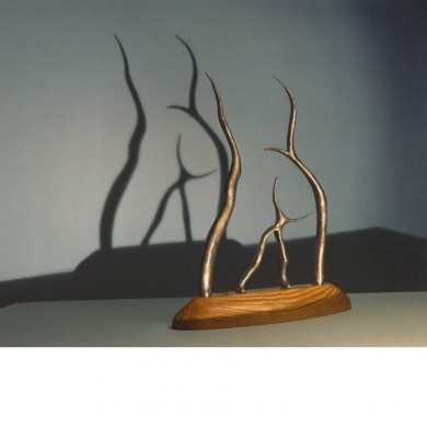 Rear View ~ Bronze, Japanese ash