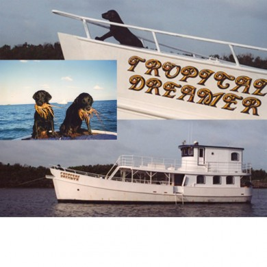 Standard installed on the Tropical Dreamer ~ The Tropical Dreamer, Abacos Islands ~ What these dogs do for a living