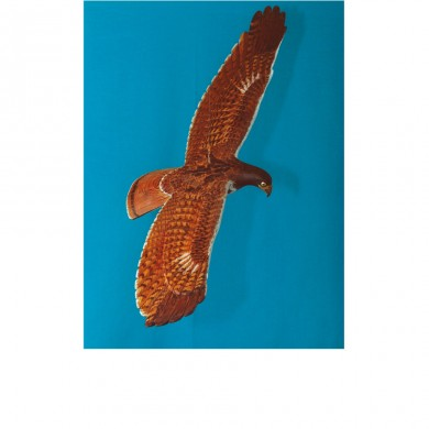 Zinks Red Tail Hawk (top view) ~ Suspended on swivel so that it continually banks